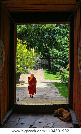 Paro Bhutan - September 10 2016: Bhutanese monk walking through the door in Kichu Lhakhang temple. The monastery is one of the oldest and sacred temples in Bhutan.