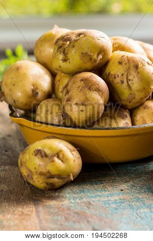 New harvest fresh potatoes ready to cook close up