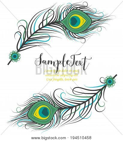 Vector illustration of peacock feathers. Background with colorful feathers and place for text