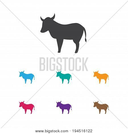 Vector Illustration Of Animal Symbol On Kine Icon. Premium Quality Isolated Cow Element In Trendy Flat Style.