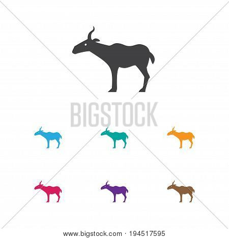 Vector Illustration Of Zoo Symbol On Antelope Icon. Premium Quality Isolated Gazelle Element In Trendy Flat Style.