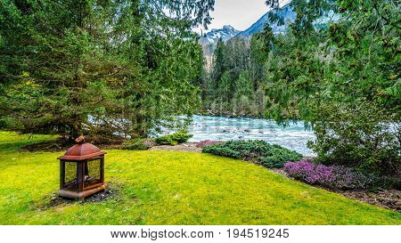 Garden along the fast flowing crystal clear waters of the Chilliwack River during early spring run off near the town of Chilliwack in British Columbia, Canada