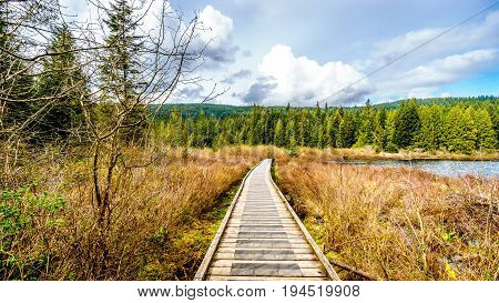 Boardwalk along Rolley Lake in Rolley Lake Provincial Park near the town of Mission in British Columbia, Canada