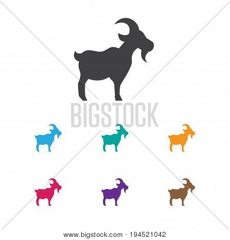 Vector Illustration Of Zoology Symbol On Goat Icon. Premium Quality Isolated Livestock Element In Trendy Flat Style.
