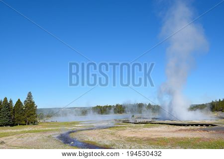 Artesia Geyser, a geyser in the Lower Geyser Basin of Yellowstone National Park, is a perpetual geyser that never stops spewing water from at least one of its two cones, usually no more than 5 ft.