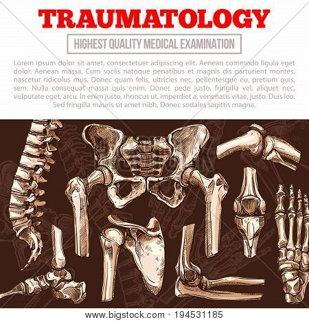 Traumatology medicine poster template. Bone and joint of human skeleton banner with hand and leg, knee, hip, foot, spine, elbow, finger, pelvis, shoulder, thorax, ankle for hospital or clinic design