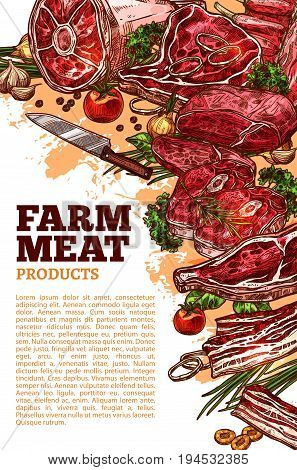 Fresh meat product of organic farm banner. Beef steak, ham, pork rib and bacon, lamb chop, liver and tenderloin sketches with vegetable, herb and spices for restaurant grill menu, butcher shop design