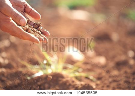 Closeup of farmer's hands pouring soil on land in farm
