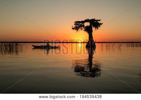 Sunrise on Blue Cypress Lake, Florida.  Solitary kayaker on calm water.