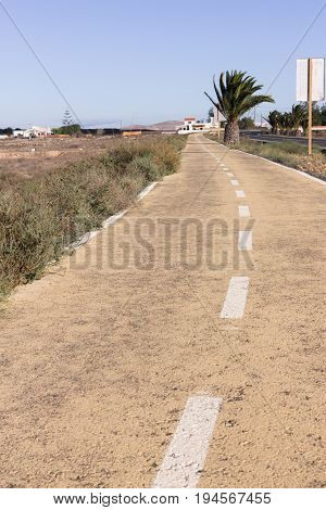 Dirt road. Off road, spring dry grass. Desert, palm ground stone way