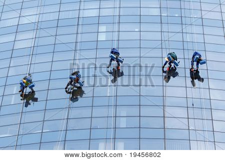 Five workers washing windows in the office building