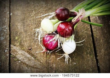 Fresh red and white onions on a wooden background .