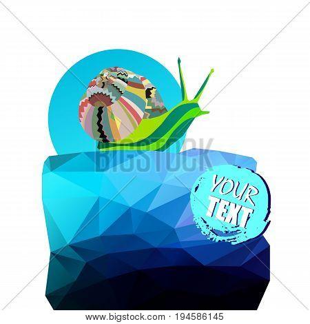 snail vector animal illustration shell slug nature helix garden slow