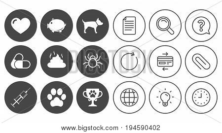 Veterinary, pets icons. Dog paw, syringe and winner cup signs. Pills, heart and feces symbols. Document, Globe and Clock line signs. Lamp, Magnifier and Paper clip icons. Vector