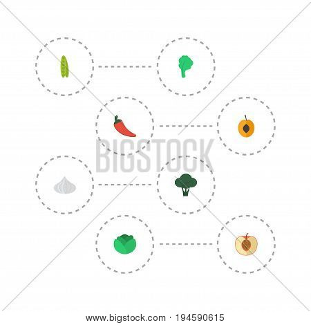 Flat Icons Bean, Hot Pepper, Nectarine And Other Vector Elements. Set Of Dessert Flat Icons Symbols Also Includes Peach, Chili, Bean Objects.