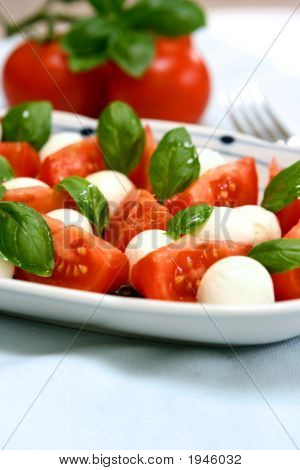 Plate Of Tricolore Salad Mozzarella With Tomatoes