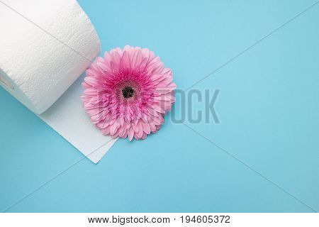 Toilet paper and pink gerbera daisy flower. Hygiene conception photo selective soft focus. Place for space copyspace