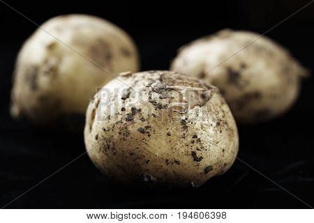 Young unwashed potatoes scattered on a black background space for text