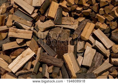 log buried under cutted pieces of firewood