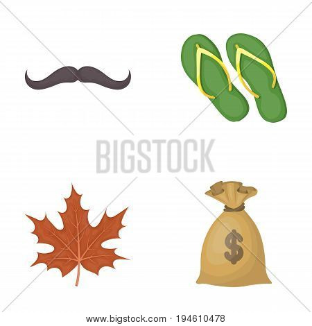fashion, symbol and other  icon in cartoon style.shoes, finance icons in set collection.