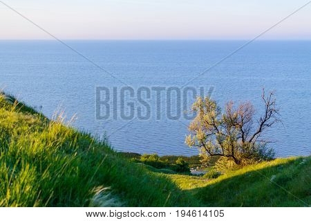 Beautiful Landscape View With A Coast And A Sea Background,
