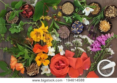 Flower and herb selection used in natural alternative herbal medicine with mortar and pestle on oak background.