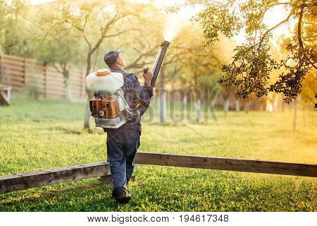 Industrial Worker Using Sprayer For Organic Pesticide Distribution In Fruit Orchard