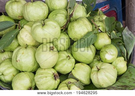 Guava fruits in the market. fruits health diet