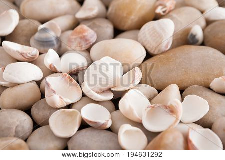 Sea pebbles background. Natural seashore stones textured surface, selective focus, shallow depth of field