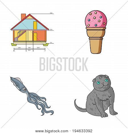 building, animal and other  icon in cartoon style. Desert, rock icons in set collection.