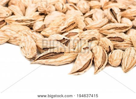 Scattered uzbek almonds in shell on a white background