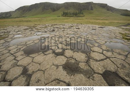 Basalt columns flattened enough to walk on, photographed in Iceland