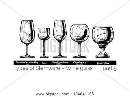 Types of wine glass. Standard wine tasting rose sauvignon blanc chardonnay and goblet glasses. illustration of stemwares in vintage engraved style. isolated on white background.