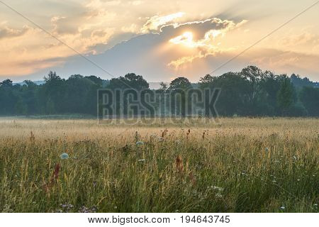 Sunrise over a scenic meadow with natural flowers. Vivid colors with dramatic clouds. Wilhelminenaue, Bayreuth, Germany