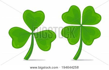 Vector illustration of four-leaf and trifoliate clover isolated on white background. Realistic lucky clover leaves. St. Patrick's day symbol