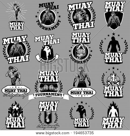 Muay Thai Boxing vector logo for boxing gym or other