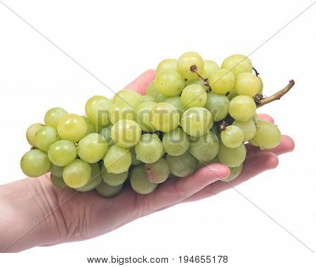 Young woman holding ripe organic grapes isolated on white background