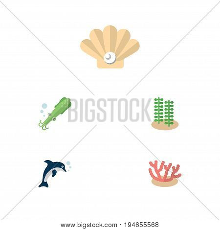 Flat Icon Marine Set Of Seaweed, Algae, Conch And Other Vector Objects. Also Includes Playful, Tentacle, Alga Elements.