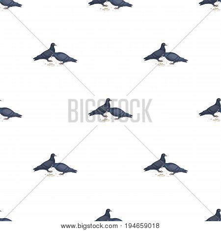 Pigeon.Old age single icon in cartoon style vector symbol stock illustration .