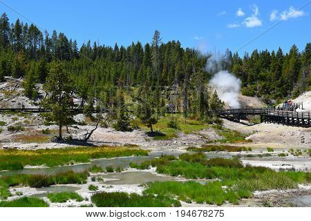YELLOWSTONE NATIONAL PARK, WYOMING - JUNE 25, 2017: Tourists on the boardwalk in the Mud Volcano area of the park.