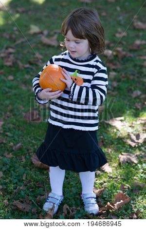 View of Beautiful smiling toddler girl wearing black and white Halloween outfit outdoors holding little pumpkin and smiling with grass and falling leaves in background