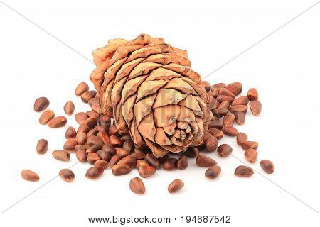 Pine nuts and ripe pine cone isolated on a white background.