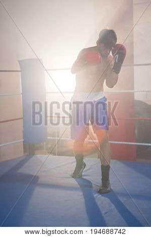 Back lit male boxer punching in boxing ring at fitness studio