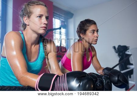 Young female boxers leaning on boxing ring rope while looking away
