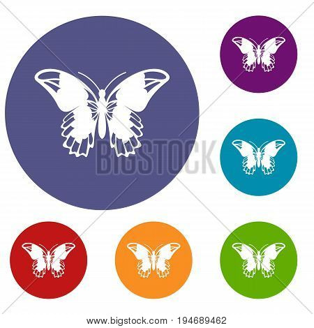 Admiral butterfly icons set in flat circle reb, blue and green color for web