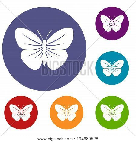 Black butterfly icons set in flat circle reb, blue and green color for web