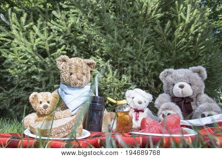 Teddy Bears on picnic blanket oudoors in grass with sandwiches watermelon and honey.