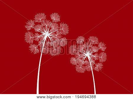 Two dandelion silhouettes in vector isolated on a dark red background