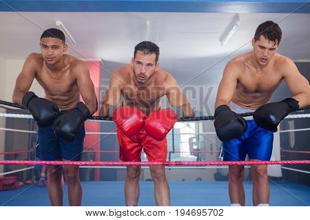 Tired young male boxers leaning on rope in boxing ring