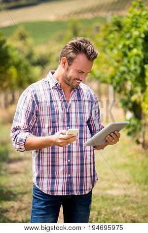 Smiling young man using phone and tablet at vineyard on sunny day
